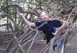 That's Odd, Man Stuck in tree