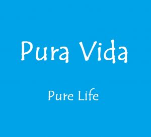 title box Pura Vida