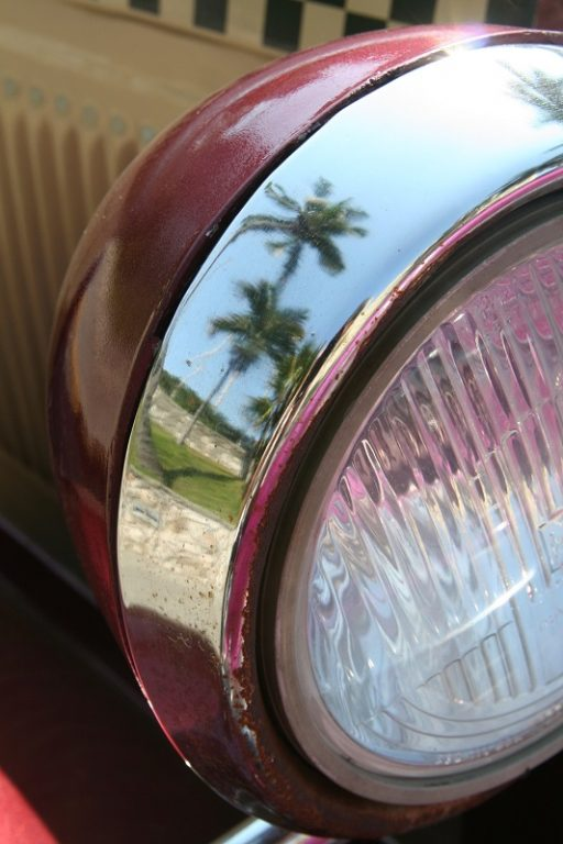 palm trees reflected in car headlight