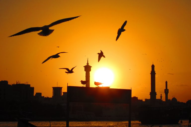 Sunset near Dubai Canal
