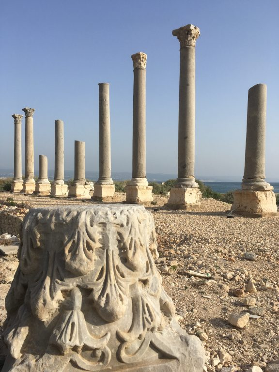 ruins of old roman columns at Tyre, Lebanon
