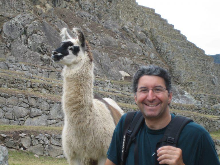 Peru, llama