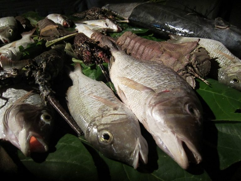 Zanzibar, Tanzania -fish