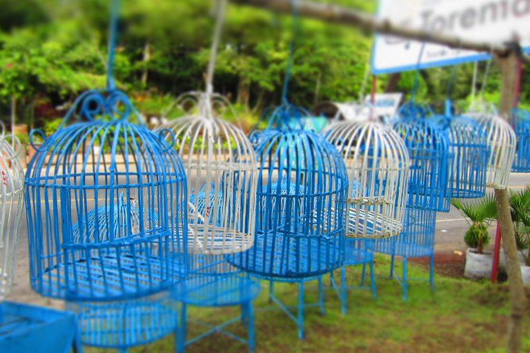 Birdcages in Nicaragua