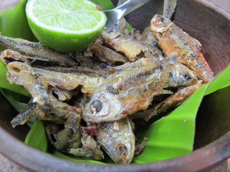 plate of dried fish with lemon in Nicaragua